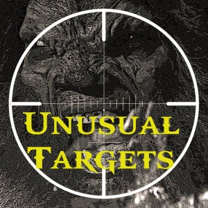 """Unusual Targets"" takes place in the afterhours of downtown Los Angeles and is the only YouTube Web series starring an API hero."